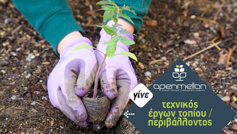 Σχεδιασμός εφαρμογών τοπίου & περιβάλλοντος IEK