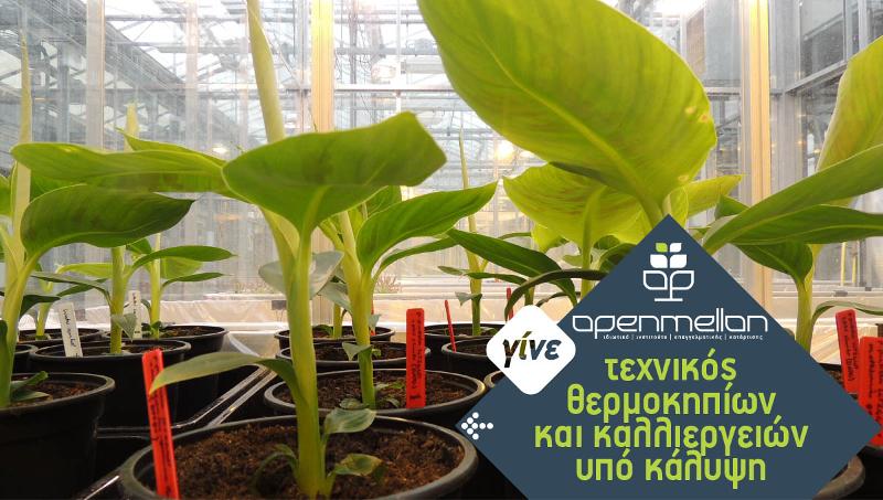 Τεχνικός θερμοκηπίων και καλλιεργειών υπό κάλυψη ΙΕΚ Λάρισα